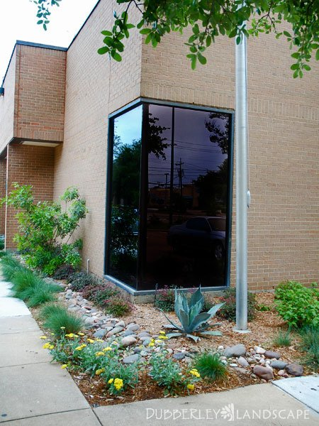 Commercial Landscapes Gallery Plano Texas