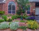 Plano, Texas Rain Garden after installation