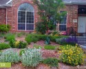 Rain garden, left side - After
