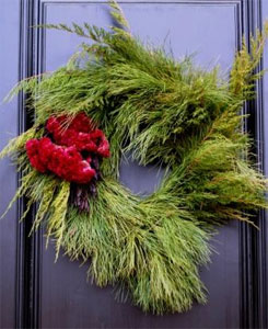 Holiday wreath with celosia and pine