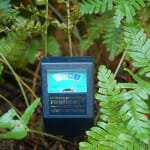 Moisture Meter- The Simple and Smart Watering Gadget You Need